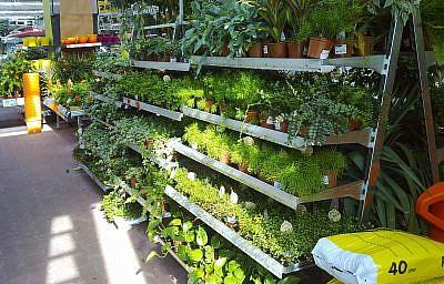 Galvanised plant rack