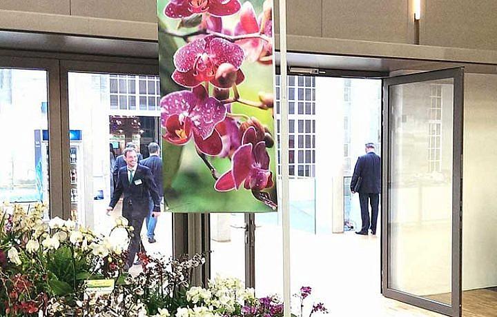 Bannerhalterung für Pflanzentische